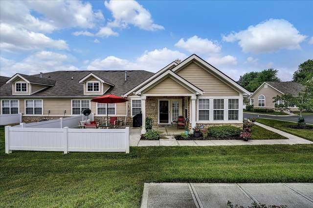 365 Cover Place, Columbus, OH 43235 (MLS #221021227) :: 3 Degrees Realty
