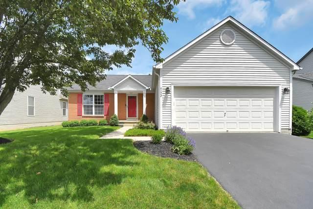6172 Brushwood Boulevard, Hilliard, OH 43026 (MLS #221021230) :: MORE Ohio