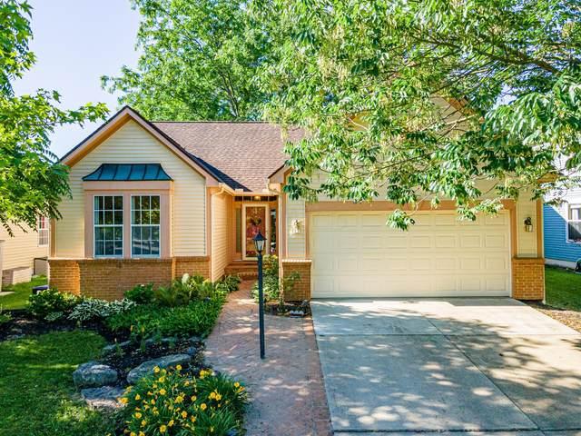 4869 Hawkstone Road, Hilliard, OH 43026 (MLS #221021258) :: Jamie Maze Real Estate Group