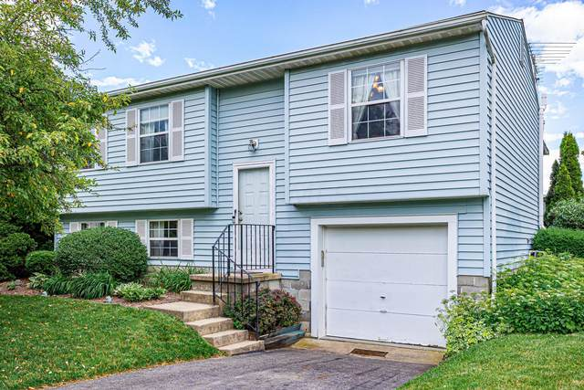 8152 Pacos Court, Powell, OH 43065 (MLS #221021282) :: RE/MAX Metro Plus