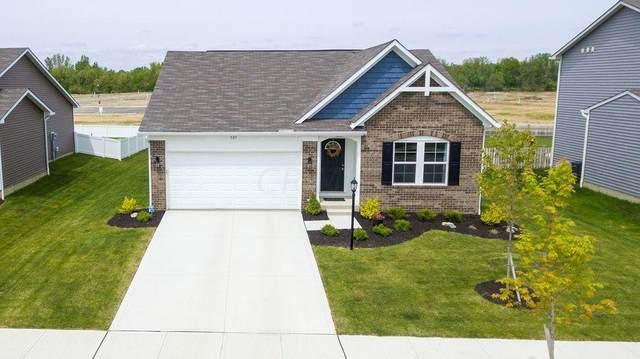507 Randall Road, Delaware, OH 43015 (MLS #221021294) :: MORE Ohio