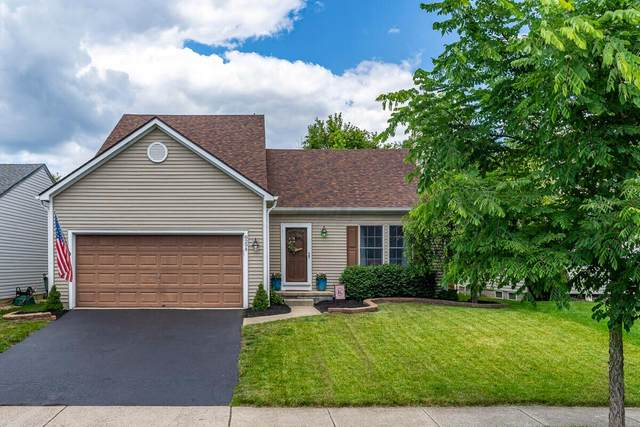 8294 Old Ivory Way, Blacklick, OH 43004 (MLS #221021350) :: ERA Real Solutions Realty