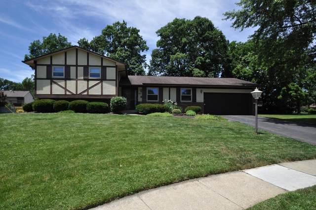 6445 Rocky Den Court, Reynoldsburg, OH 43068 (MLS #221021483) :: ERA Real Solutions Realty