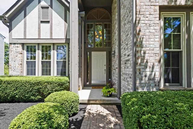 352 Harrogate Loop N, Westerville, OH 43082 (MLS #221021690) :: LifePoint Real Estate