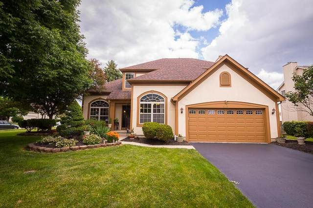 8281 Aurora Court, Lewis Center, OH 43035 (MLS #221021692) :: ERA Real Solutions Realty