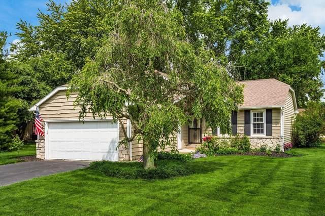 5414 Timberlake Circle, Orient, OH 43146 (MLS #221022056) :: Jamie Maze Real Estate Group