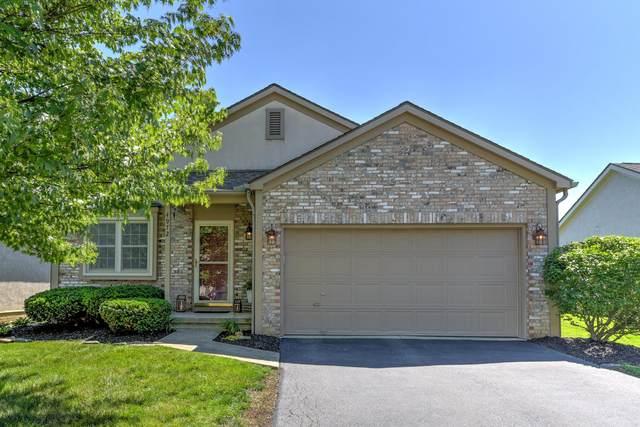 4972 Conifer Drive, Westerville, OH 43081 (MLS #221022115) :: Berkshire Hathaway HomeServices Crager Tobin Real Estate