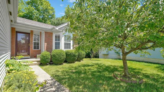 4958 Petticoat Court, Columbus, OH 43231 (MLS #221022131) :: Jamie Maze Real Estate Group