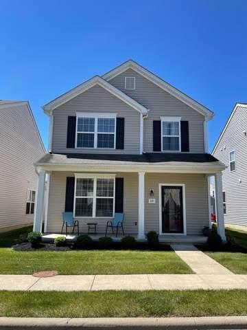 119 Purple Leaf Lane, Lewis Center, OH 43035 (MLS #221022337) :: Ackermann Team
