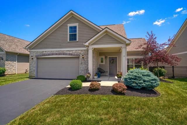 1232 Little Bear Loop, Lewis Center, OH 43035 (MLS #221022687) :: Jamie Maze Real Estate Group