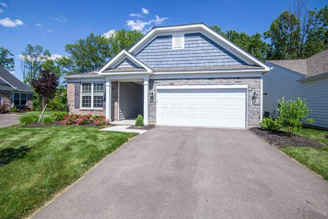 5336 Larceny Drive #59, Westerville, OH 43081 (MLS #221022690) :: RE/MAX Metro Plus