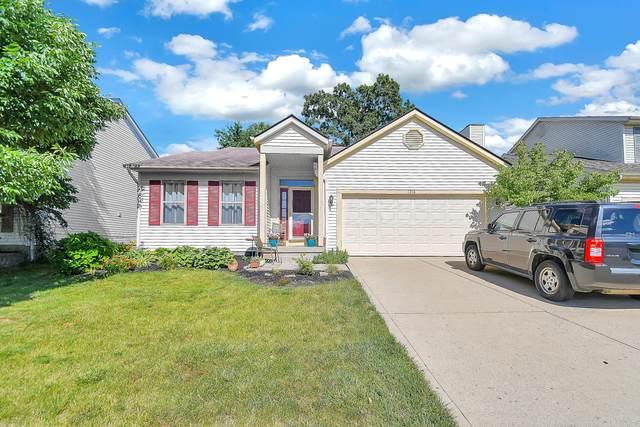 1316 Winesap Drive, Columbus, OH 43204 (MLS #221022769) :: Signature Real Estate