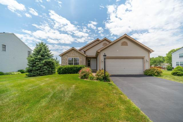 6842 Sherbrook Drive, Westerville, OH 43082 (MLS #221022808) :: The Raines Group