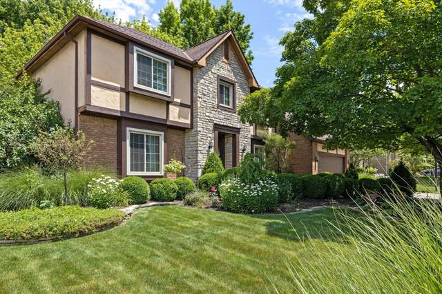1016 Walsingham Court, Westerville, OH 43081 (MLS #221022846) :: Signature Real Estate