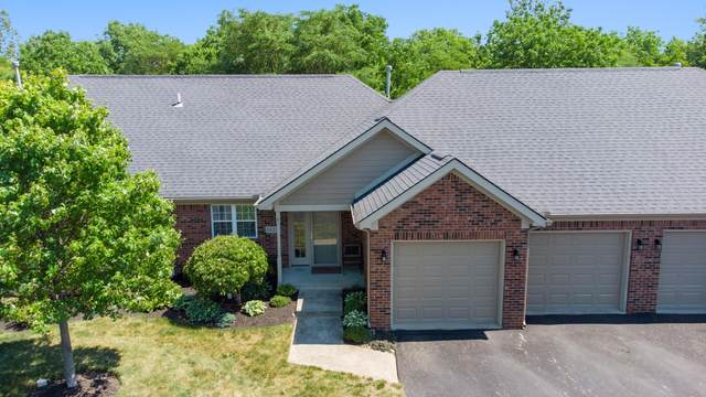5822 Lookout Boulevard, Grove City, OH 43123 (MLS #221022863) :: Jamie Maze Real Estate Group