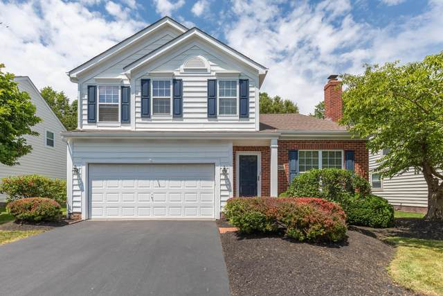 244 Stamford Drive, Powell, OH 43065 (MLS #221022911) :: Exp Realty