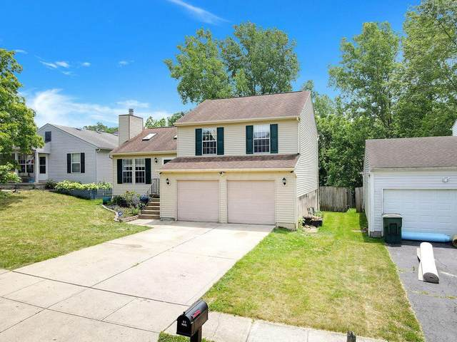 3355 Meadow Gold Drive, Columbus, OH 43223 (MLS #221023019) :: MORE Ohio