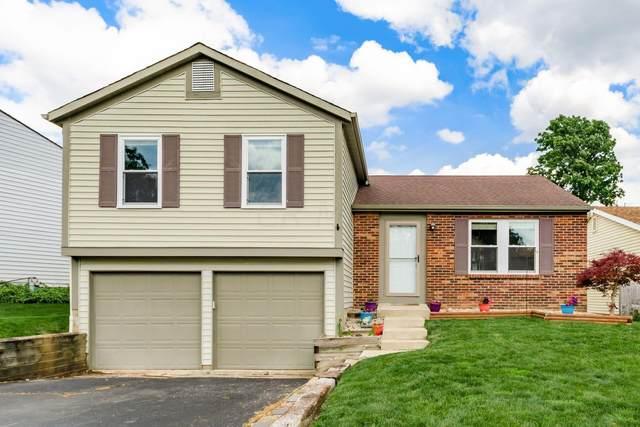 8412 Waco Lane, Powell, OH 43065 (MLS #221023617) :: Signature Real Estate