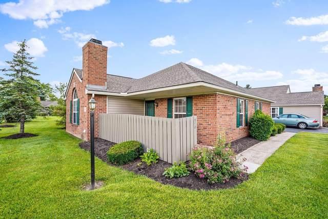 598 Chardonnay Lane, Lewis Center, OH 43035 (MLS #221023785) :: Signature Real Estate