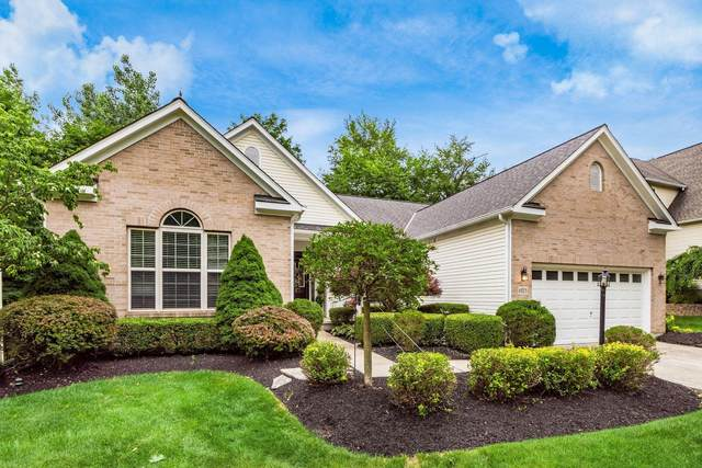 6823 Casselbury Mills Court, Lewis Center, OH 43035 (MLS #221024181) :: Signature Real Estate