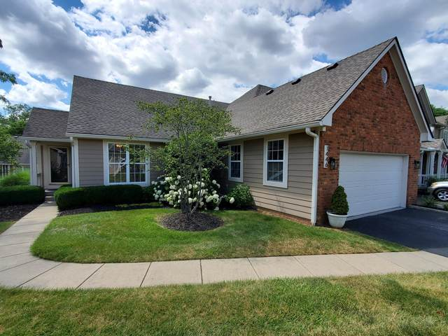 1446 Sedgefield Drive, New Albany, OH 43054 (MLS #221024379) :: 3 Degrees Realty