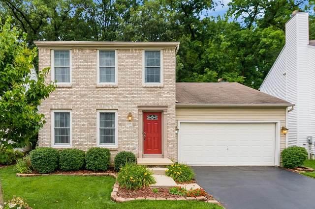 8759 Olenbrook Drive, Lewis Center, OH 43035 (MLS #221024579) :: Berkshire Hathaway HomeServices Crager Tobin Real Estate