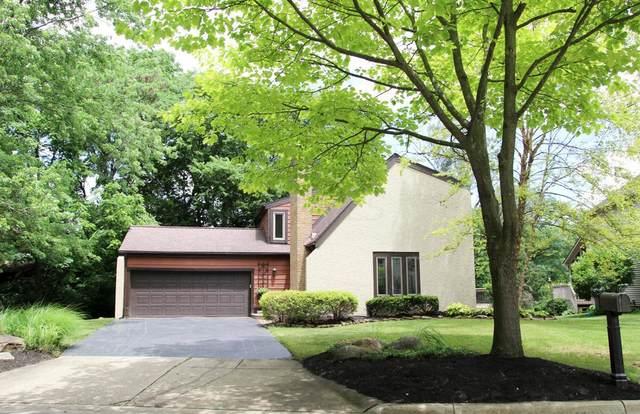 156 Stonefence Lane, Dublin, OH 43017 (MLS #221024761) :: Signature Real Estate