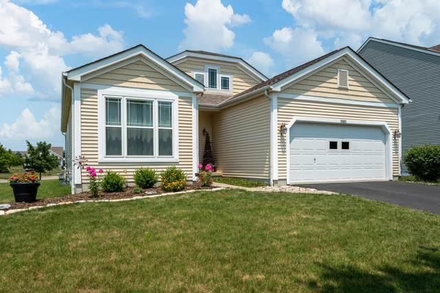 5882 Tully Cross Drive, Galloway, OH 43119 (MLS #221024775) :: Sam Miller Team