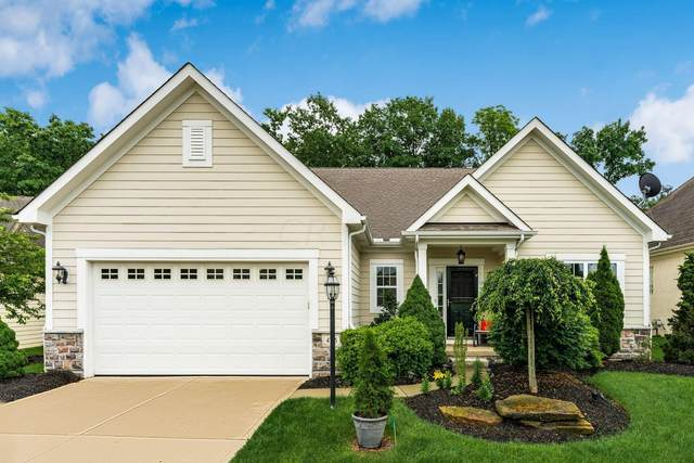 4755 St Medan Drive, Westerville, OH 43082 (MLS #221024837) :: The Raines Group