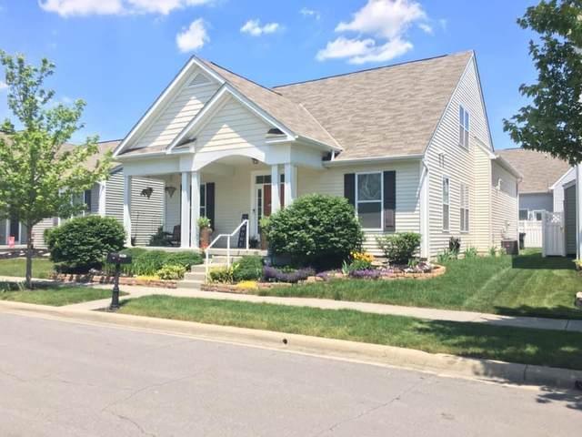 6158 Jennis Road, Westerville, OH 43081 (MLS #221024866) :: Sam Miller Team