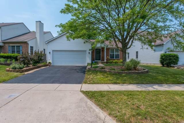 1559 Trabue Woods Boulevard, Columbus, OH 43228 (MLS #221025042) :: Berkshire Hathaway HomeServices Crager Tobin Real Estate