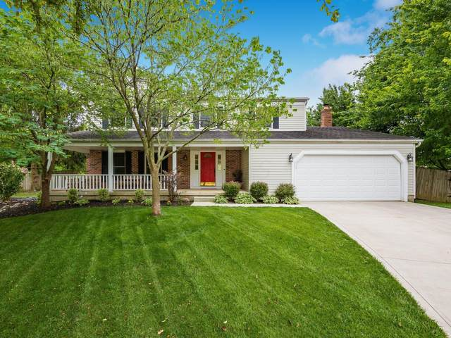 8203 Snowhill Court, Westerville, OH 43081 (MLS #221025583) :: 3 Degrees Realty