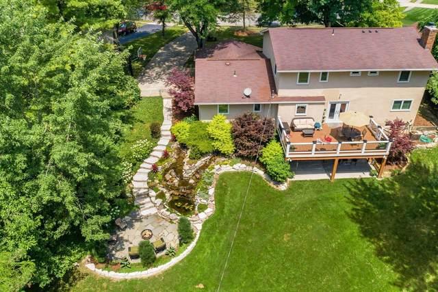 1225 Norwell Drive, Columbus, OH 43220 (MLS #221025730) :: Signature Real Estate
