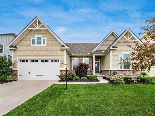 338 Brets Lane, Lewis Center, OH 43035 (MLS #221025828) :: Berkshire Hathaway HomeServices Crager Tobin Real Estate