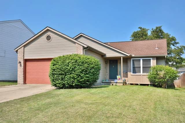 1551 Covina Drive, Columbus, OH 43228 (MLS #221026184) :: Signature Real Estate