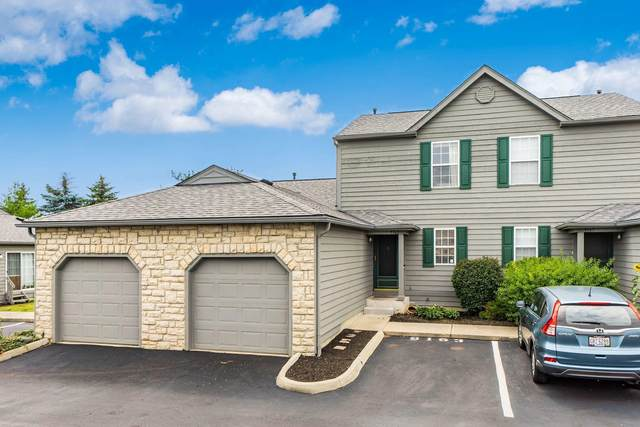 9163 Parkpoint Lane, Lewis Center, OH 43035 (MLS #221026208) :: Signature Real Estate