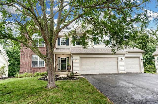 7034 Kellogg Drive, Powell, OH 43065 (MLS #221026317) :: Signature Real Estate