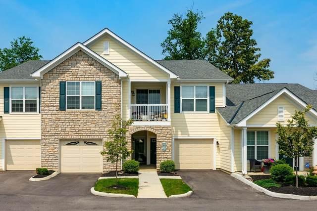 222 Lake Cove Drive, Delaware, OH 43015 (MLS #221026639) :: Sam Miller Team
