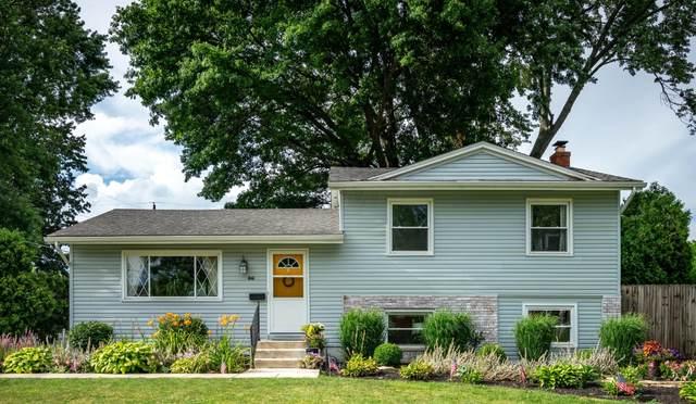6546 Red Fox Road, Reynoldsburg, OH 43068 (MLS #221026842) :: Sam Miller Team