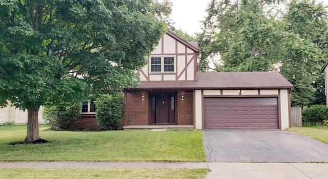 285 Maple Avenue, Pickerington, OH 43147 (MLS #221026862) :: Signature Real Estate