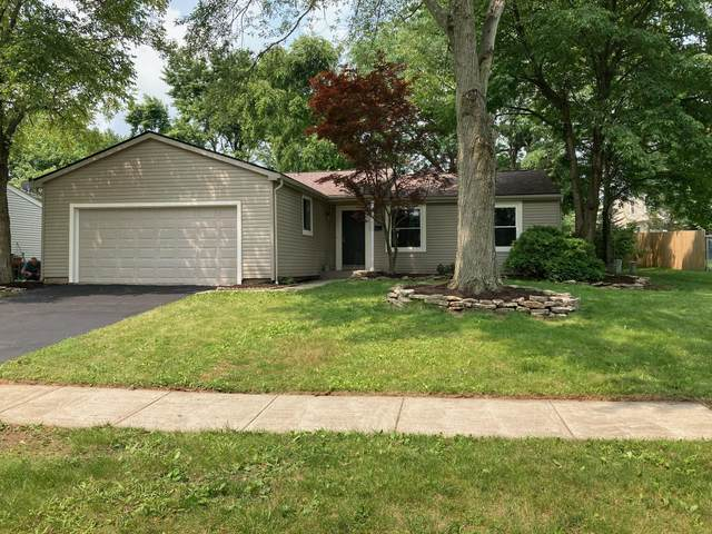 7403 Pate Court, Columbus, OH 43235 (MLS #221027269) :: 3 Degrees Realty
