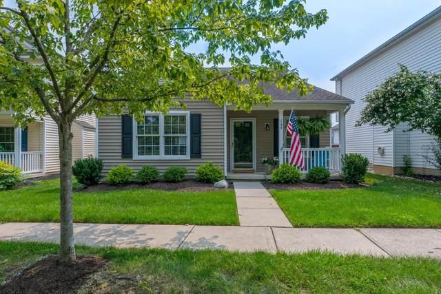 149 Feathertip Lane, Lewis Center, OH 43035 (MLS #221027363) :: Signature Real Estate