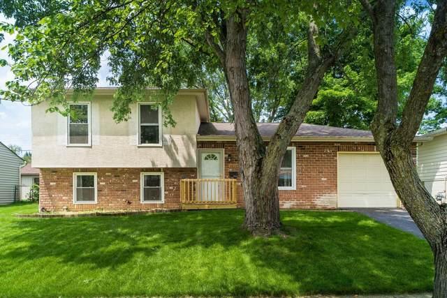 4805 Mc Fadden Road, Columbus, OH 43229 (MLS #221027656) :: The Tobias Real Estate Group