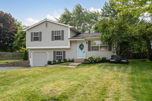 4951 Cavan Court, Columbus, OH 43221 (MLS #221027776) :: Signature Real Estate