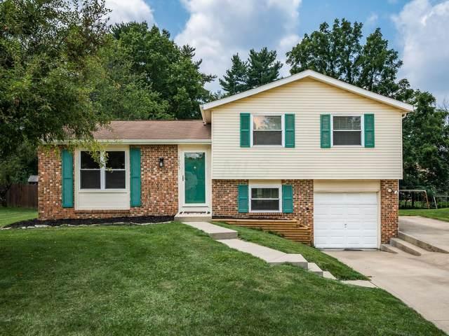 1005 Ruskin Drive, Reynoldsburg, OH 43068 (MLS #221028072) :: Signature Real Estate