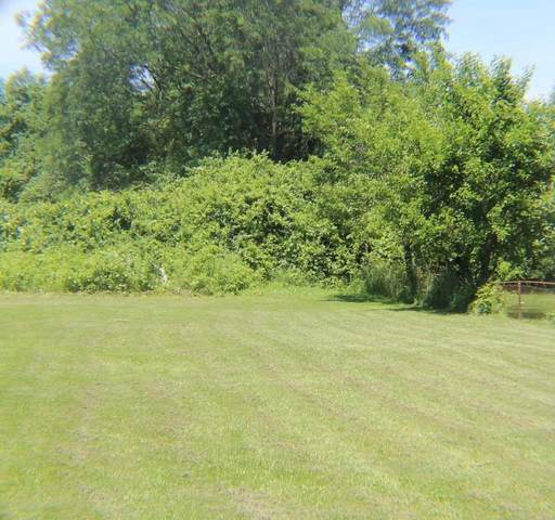 414 Houk Road, Delaware, OH 43015 (MLS #221028123) :: The Raines Group