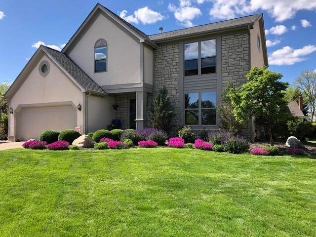 2688 Hoover Crossing Way, Grove City, OH 43123 (MLS #221028186) :: The Raines Group