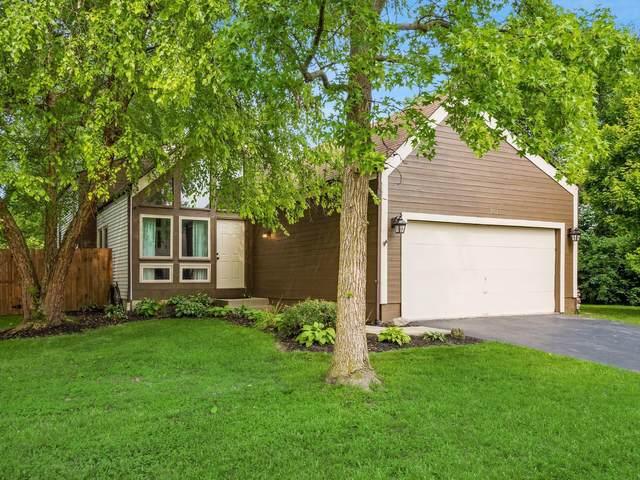 7511 Placid Avenue, Worthington, OH 43085 (MLS #221028213) :: Exp Realty
