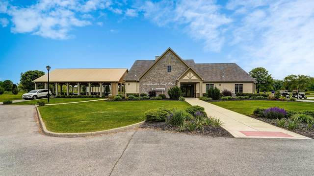 6300 Bent Grass Boulevard, Canal Winchester, OH 43110 (MLS #221028238) :: RE/MAX Metro Plus