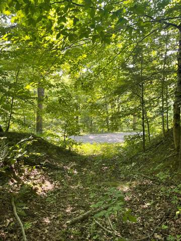 0 Wion Ridge Road, Chandlersville, OH 43727 (MLS #221028257) :: The Holden Agency